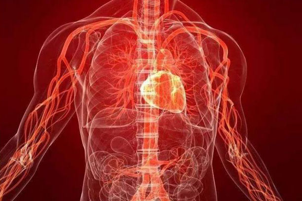 Do you Really Know the Cardiovascular Diseases?
